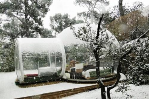 bubble tent3