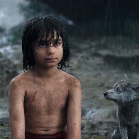 the-jungle-book-469233l-480x480-b-372aa9f4